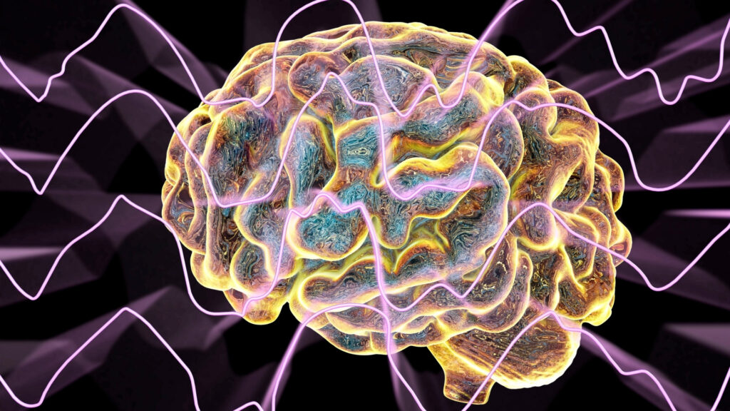 Brain waves - meditation